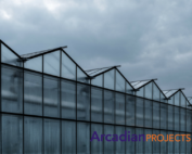 Growing-green-arcadian-projects